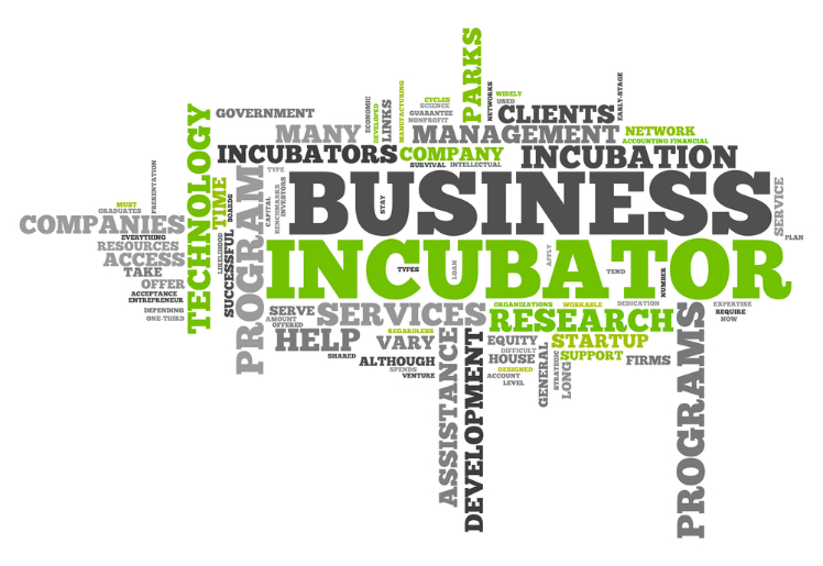 difference between startup incubator and accelerator